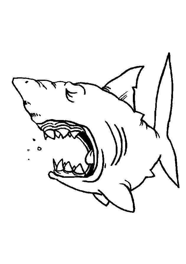 Coloriage Animaux marins #186 (Animaux) - Coloriages à ...