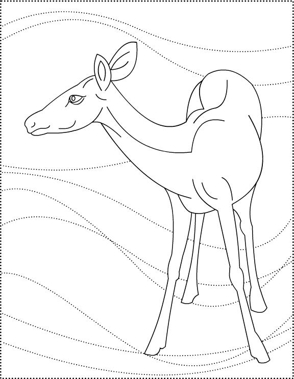 Coloriage Chevreuil #2734 (Animaux) - Album de coloriages