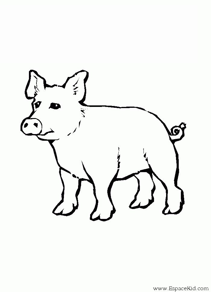 Coloriage Cochon #3765 (Animaux) - Album de coloriages
