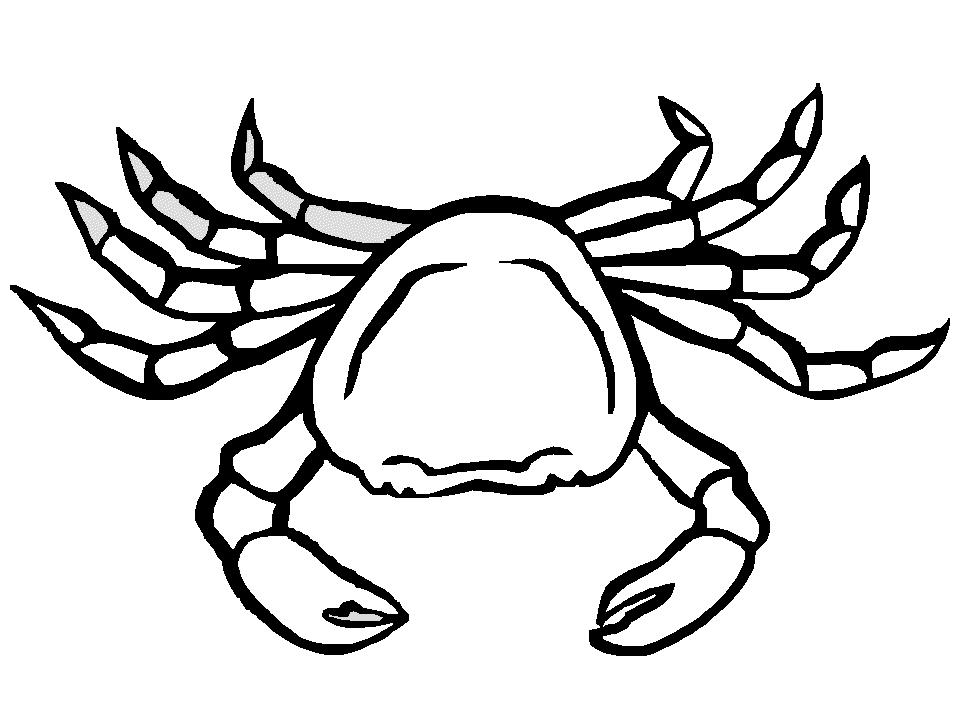 Coloriage Crabe 4579 Animaux Album De Coloriages