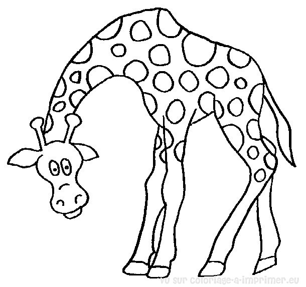 Coloriage Girafe #7250 (Animaux) - Album de coloriages