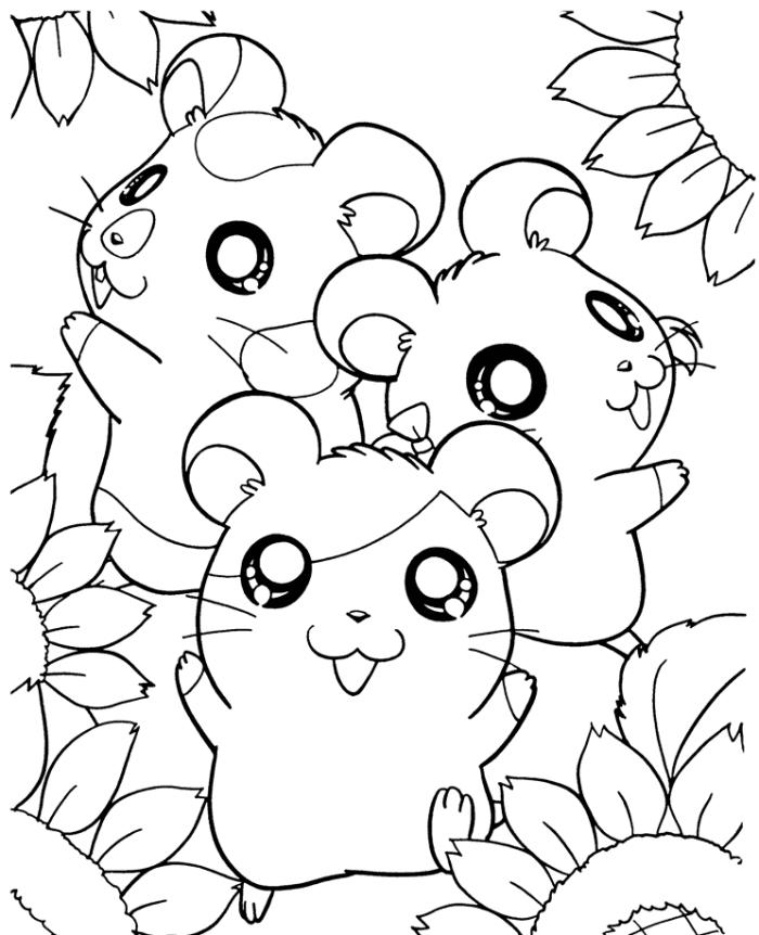 Coloriage Hamster #8062 (Animaux) - Album de coloriages