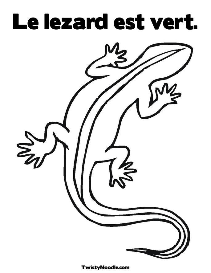 Coloriages Lézards (Animaux) - Album de coloriages