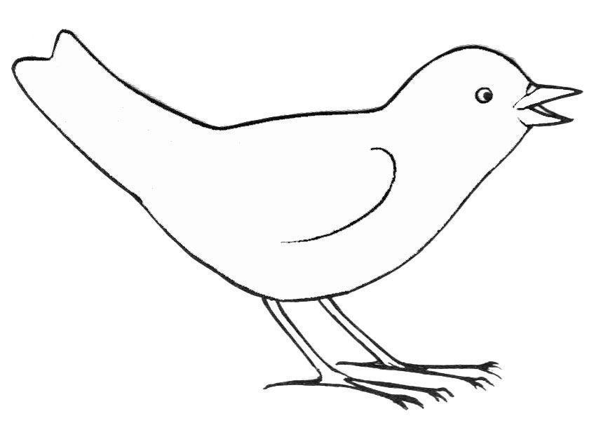 Coloriages Oiseaux (Animaux) - Page 3 - Album de coloriages