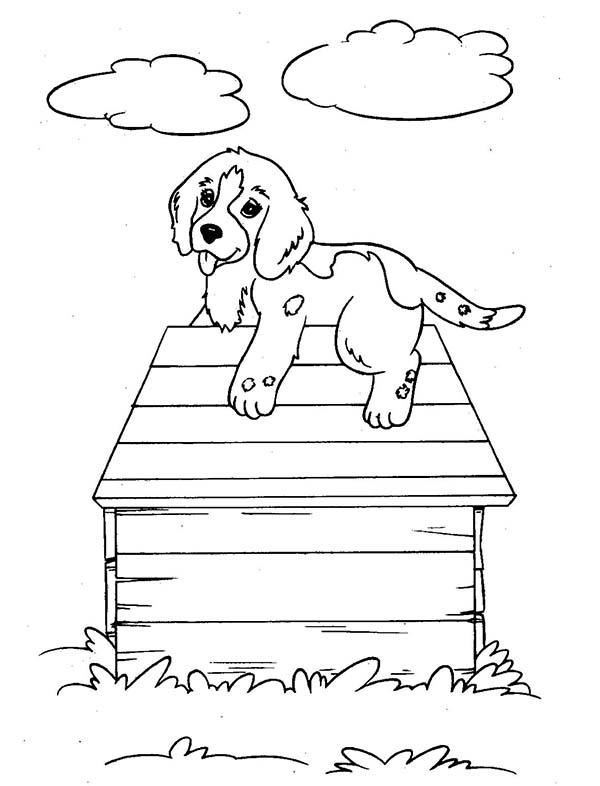 Coloriage Niche à chien #62424 (Bâtiments et Architecture ...