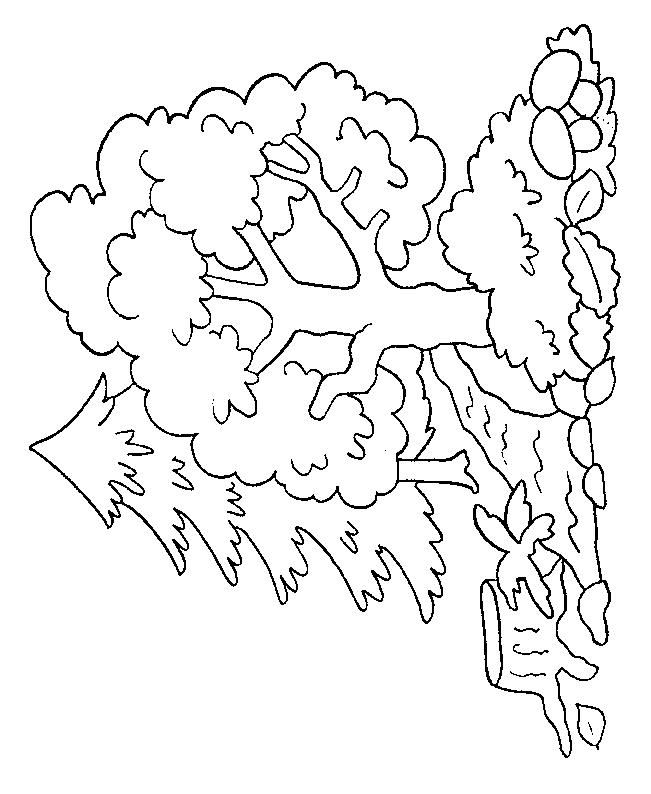 Coloriage Arbre #154741 (Nature) - Album de coloriages