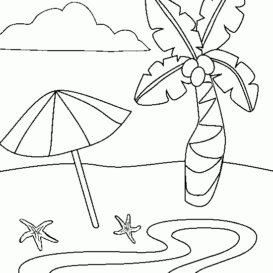 Coloriage Cocotier 162166 Nature Album De Coloriages