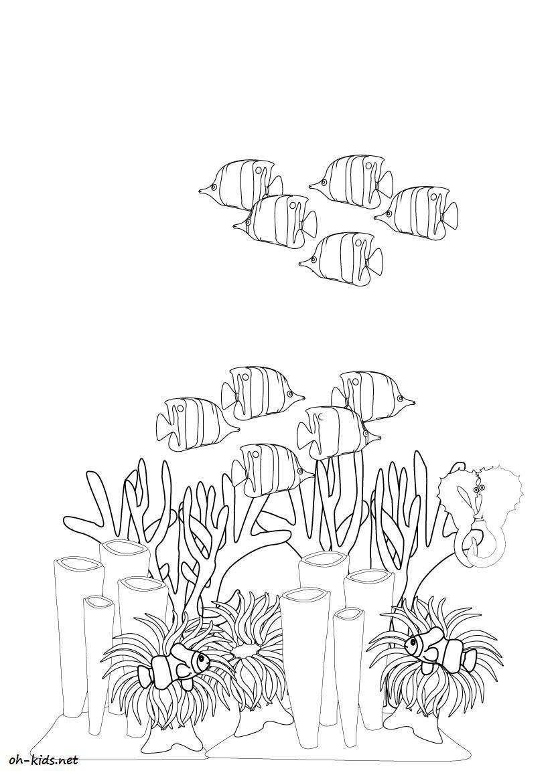 Coloriage Corail #7 (Nature) - Coloriages à imprimer