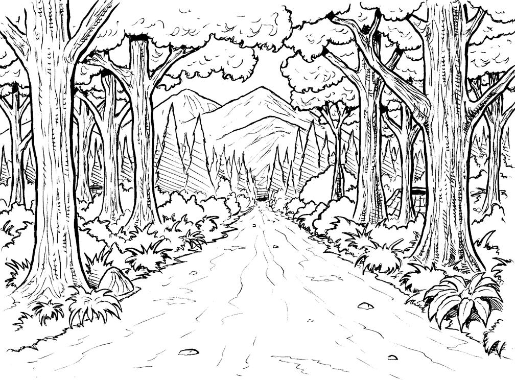 Coloriages Forêt (Nature) - Page 2 - Album de coloriages