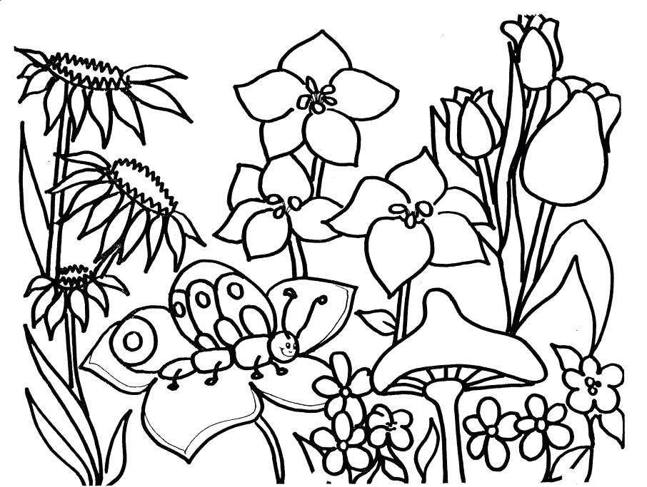 Coloriage Saison Printemps #164766 (Nature) - Album de ...